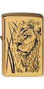 204B Proud Lion